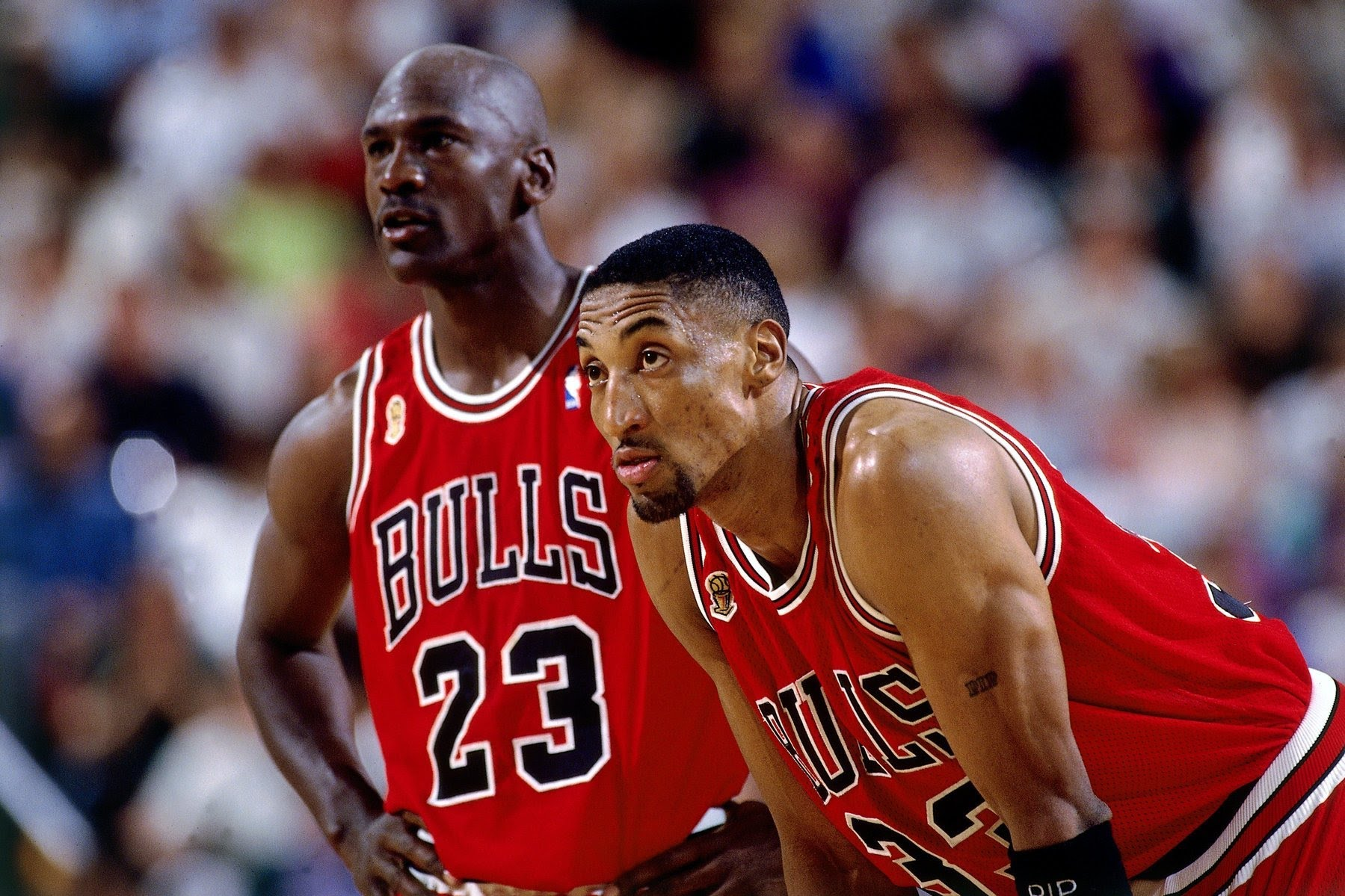 taburete Íntimo Humedal  Chicago Bulls: Best Players By Position Of The Modern Era